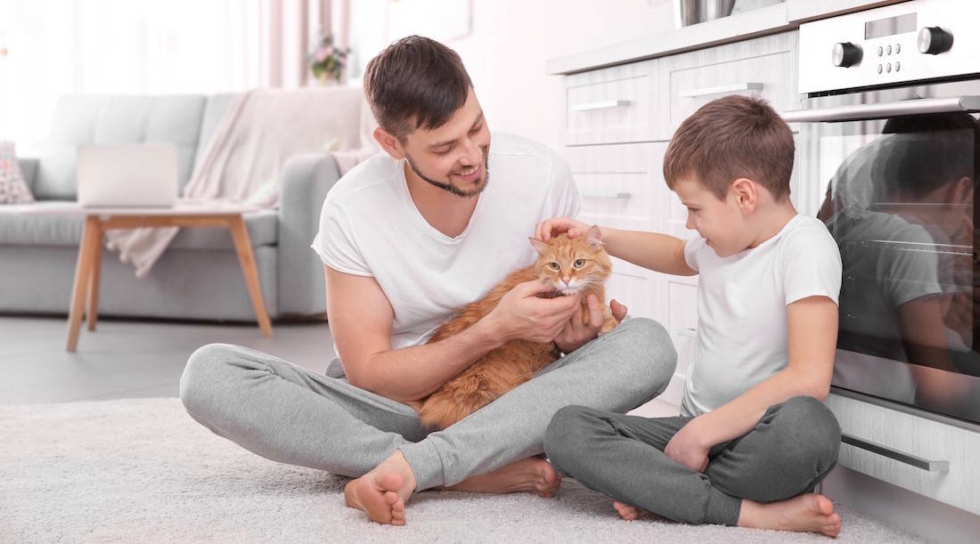 Benefits to become pet-friendly landlord